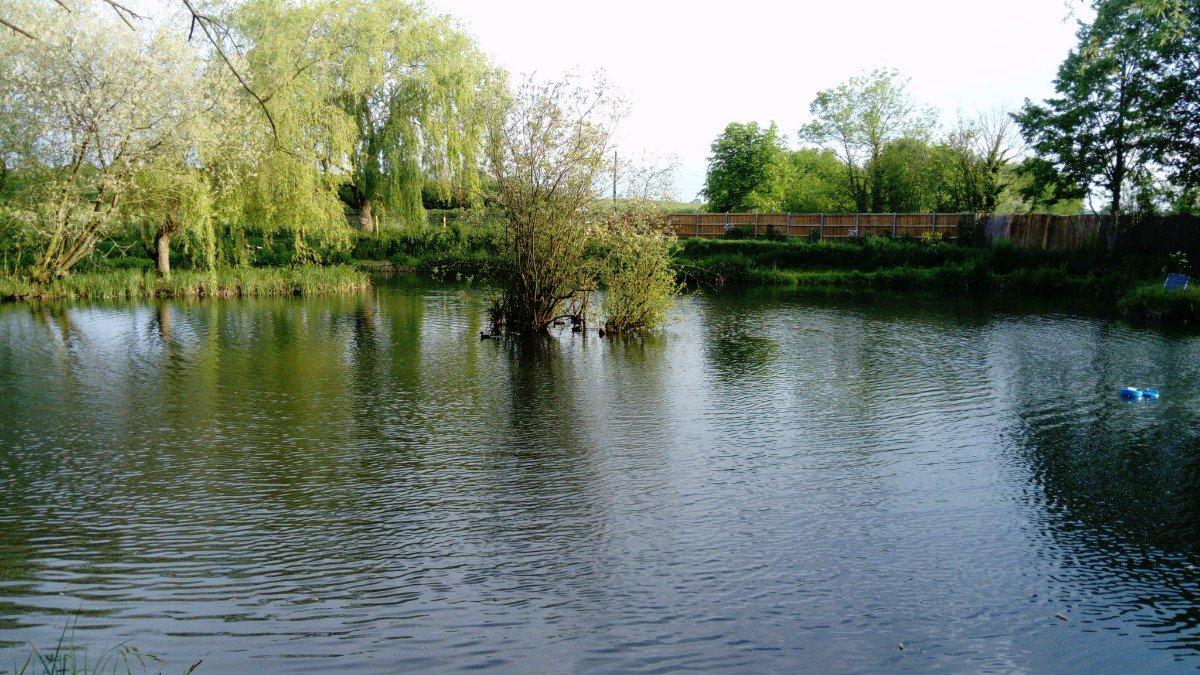 Pleased to report the Road Lake will reopen tomorrow (Sunday). #RumBridgeFisheries #carpfishing #suf