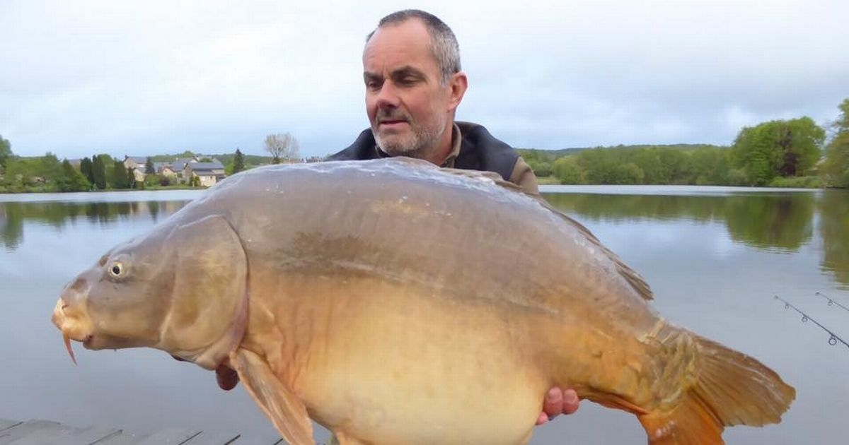 Fish aren't just for catching via @LivEchonews https://t.co/boN4P6QwAT #carpfishing #<b>Carpy</b> ht