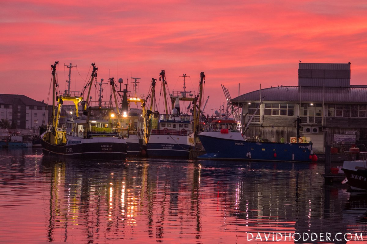 test Twitter Media - Fishing boats return to Plymouth Fish Market,  as the sun rises. Their maritime bounty helping to contribute to the 6,000 tonnes of #fish sold each year in #Plymouth, @britainsocean  @ThinkFishPlym @Sutton_Harbour  #Photography #WeKnowPlymouth https://t.co/nCriVmAZ4C
