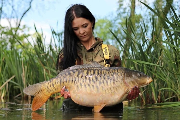 Perfection... #trojanbaits #<b>Vasswaders</b> #carpfishing https://t.co/HTgswx0Fwz