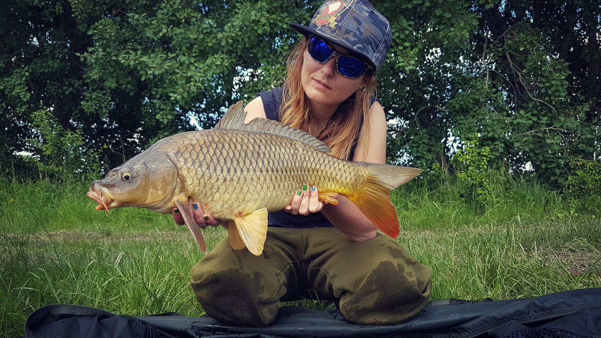 #summer #Fishing #carpfishing #CARPology https://t.co/cEmzpBZ722
