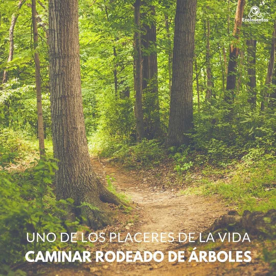 RT @Verde_Way: Uno de los placeres de la vida 🌳 😍 https://t.co/nkAoiyUis0