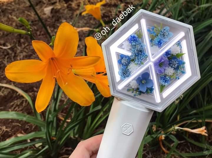 Lightstick or beautiful flower  #teenchoice  #ChoiceInternationalArtist for #EXO  @weareoneEXO #DoKyungsoo https://t.co/qexMHTlU0b