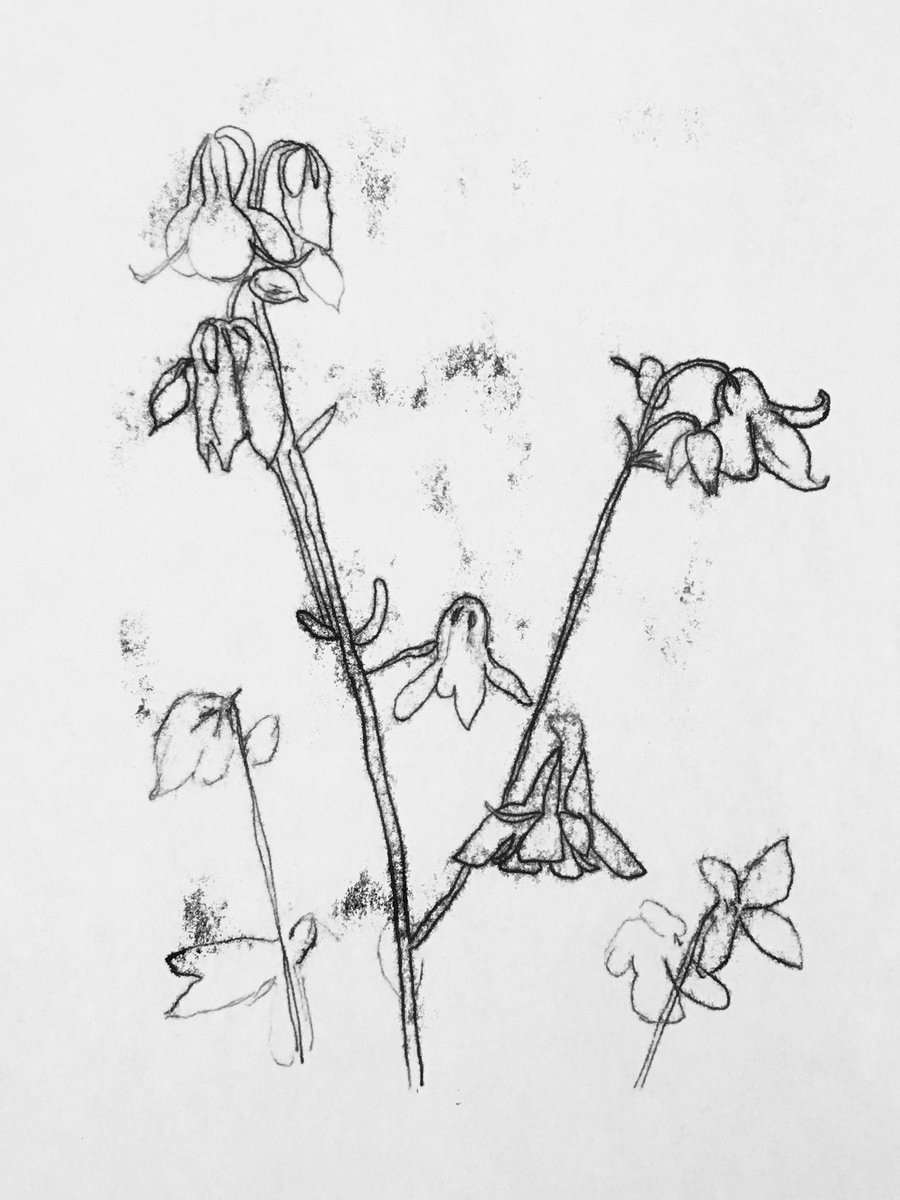 Image for Get motivated to create and book yourself on to our Floral Monoprinting #Workshop with Catherine Wynne-Paton on Saturday 29th June. See our website for more details: https://t.co/W7YRxByFXl @wynnepaton #art  #flowers #creative #RealMidWales #Powys #BleddfaCentre #MondayMotivation https://t.co/f0o3FADTzq