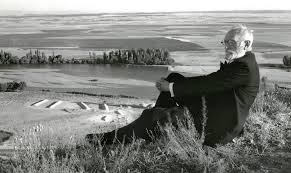 test Twitter Media - Día de San Juan Bautista, el del sol más largo del año, y en éste, además, domingo. Subíamos a la cabecera de la Castilla leonesa... Entre campos de trigo y alfombras de amapolas, y rebaños de ovejas trashumantes... íbase uno soñando en la eterna historia https://t.co/MEviHxljli https://t.co/emr1bF9SZm