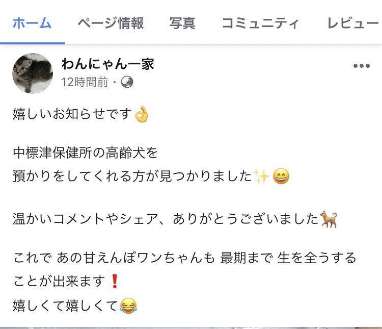 test ツイッターメディア - 🌸中標津保健所さんのわんこは卒業していました😭🌸 https://t.co/3Rfhw7BVfp
