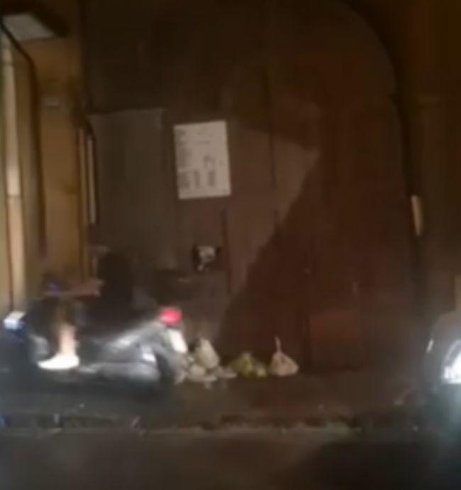 test Twitter Media - #Cronaca #Castellammare - Traffico in tilt e motorini sui marciapiedi, 'nuova corsia' per gli scooter in via Roma LEGGI LA NEWS: https://t.co/Wxb7H8b50W https://t.co/O4PVqvjlq3
