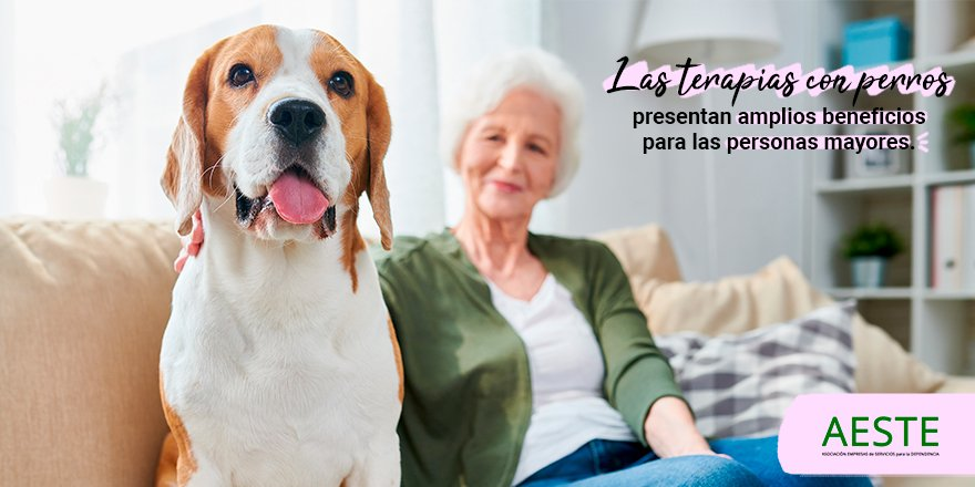 test Twitter Media - 🐶¿Sabías que en los centros #AESTEasociados trabajamos con terapias con perros porque ayudan a?: 🔶Disminuir tensión arterial, colesterol y triglicéridos. 🔶Aumentar la supervivencia en afecciones coronarias.  🔶Reducir la ansiedad.  https://t.co/5Vr4sQ52zu #AESTEasociados https://t.co/TNrKhaIY6P