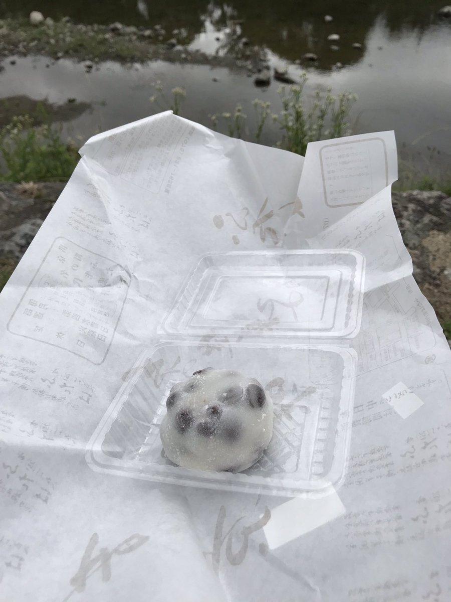 test ツイッターメディア - 出町ふたばで豆餅買って、鴨川沿いで食べます https://t.co/6R8xjkz6xA