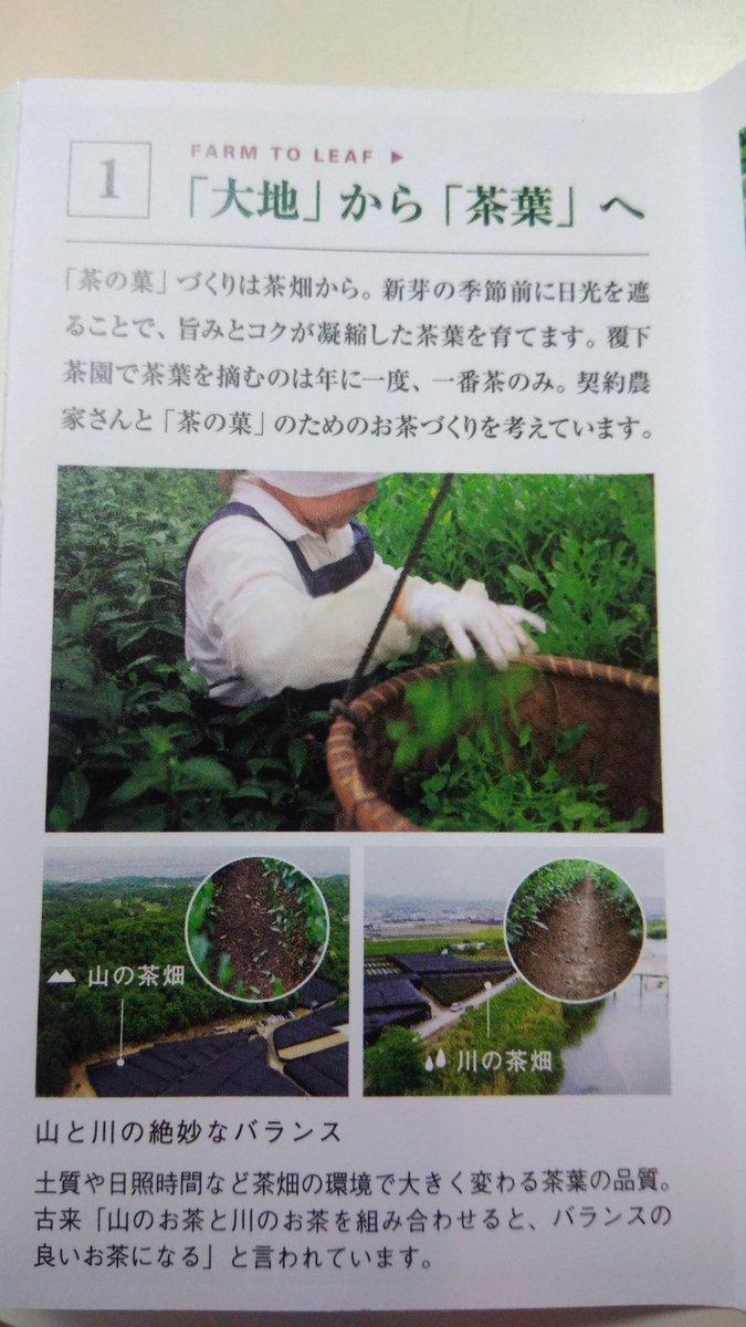 test ツイッターメディア - マールブランシュの茶の菓のお抹茶って、木津川の流れ橋の脇の茶畑でも作られてんの!? https://t.co/l5ZoKiFjSS
