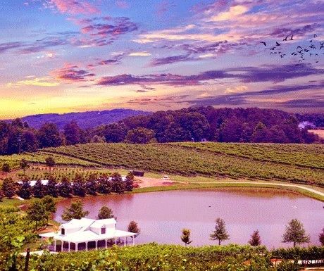 Top 5 destinations for the wine connoisseur - A Luxury Travel Blog  : A Luxury Travel Blog