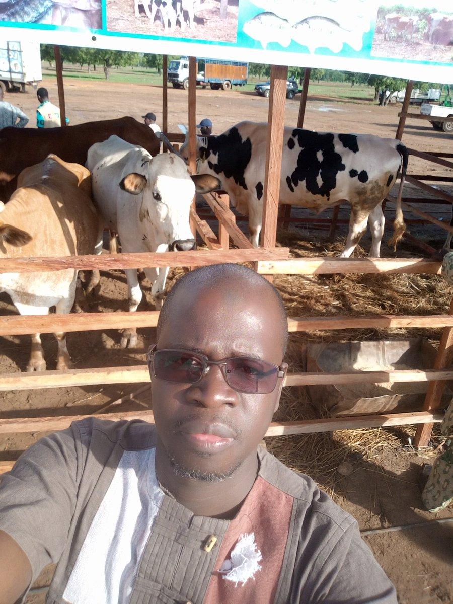 test Twitter Media - Bonjour, depuis la journée de #paysan a Bougouni #Mali . La modernisation intelligente et durable de  l'#Agriculture  comme solution de création d'emploi et d'entreprises.#mfc. #karamkd https://t.co/4ZRzxHPAmG