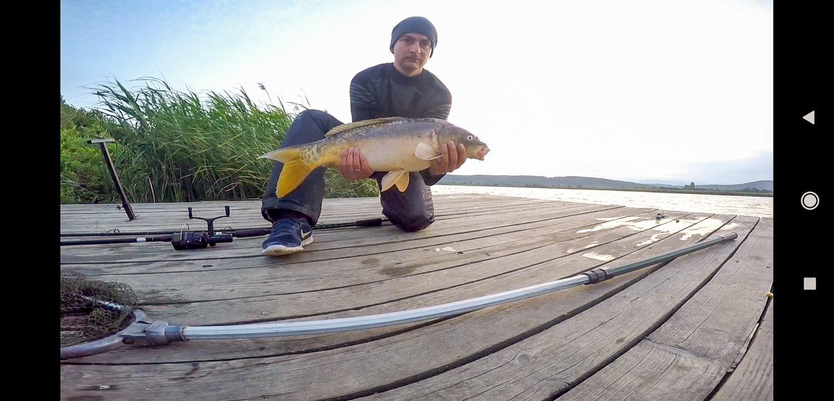 #carp #fish #fishinglife #carpfishing #рыбалка #карп https://t.co/E786qj60DC