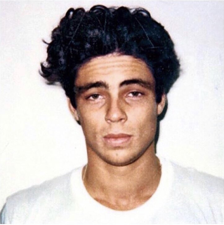 RT @JoeBaia: I'd just like to take a minute to appreciate the fucking life out of young Benicio Del Toro's hair https://t.co/SWnsrMCCW7