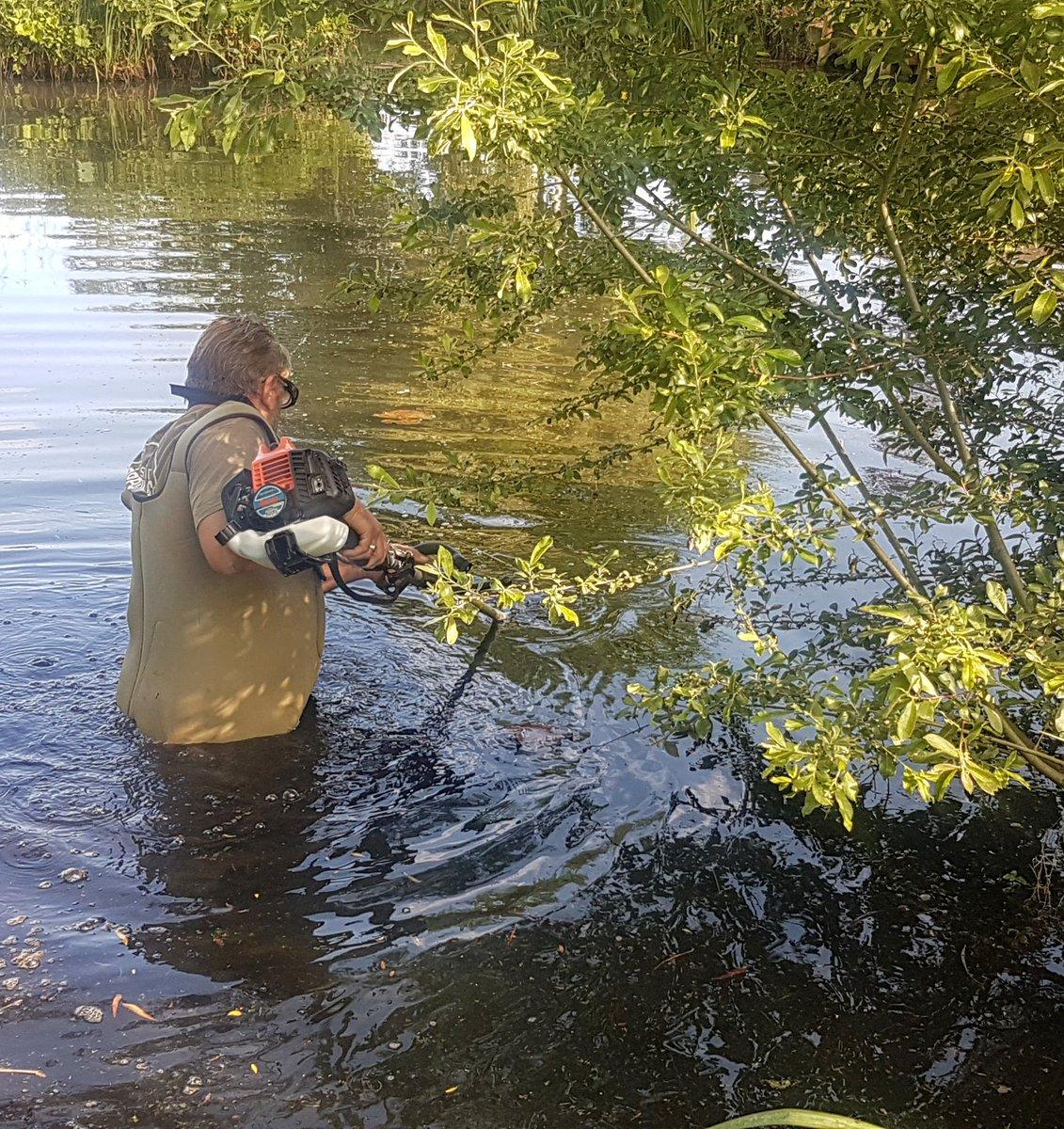 Weed clearance underway on the Road Lake... #RumBridgeFisheries #CarpFishing #Holidays #Suffolk #Car