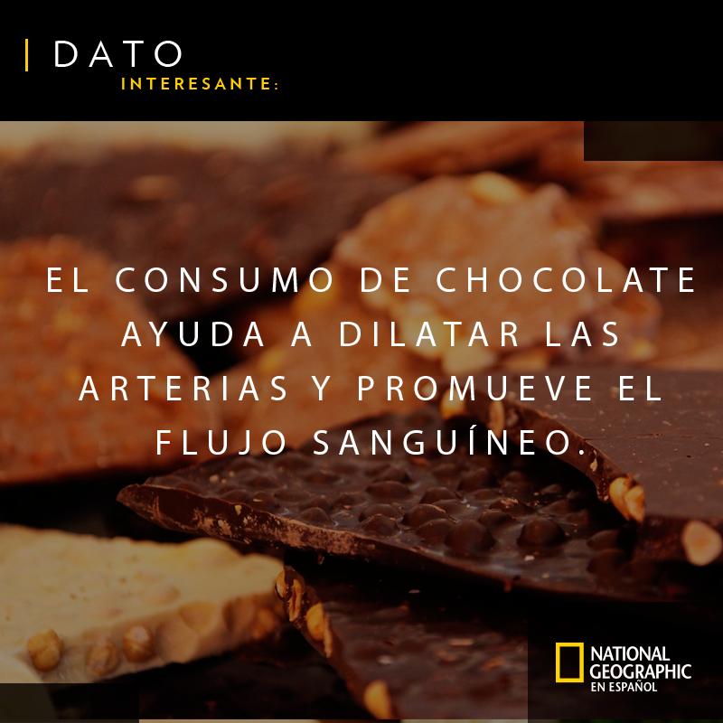 RT @RevistaNatGeo: Les compartimos una razón más por la que deben comer chocolate. #FelizDomingo https://t.co/KiMsP0ii3D