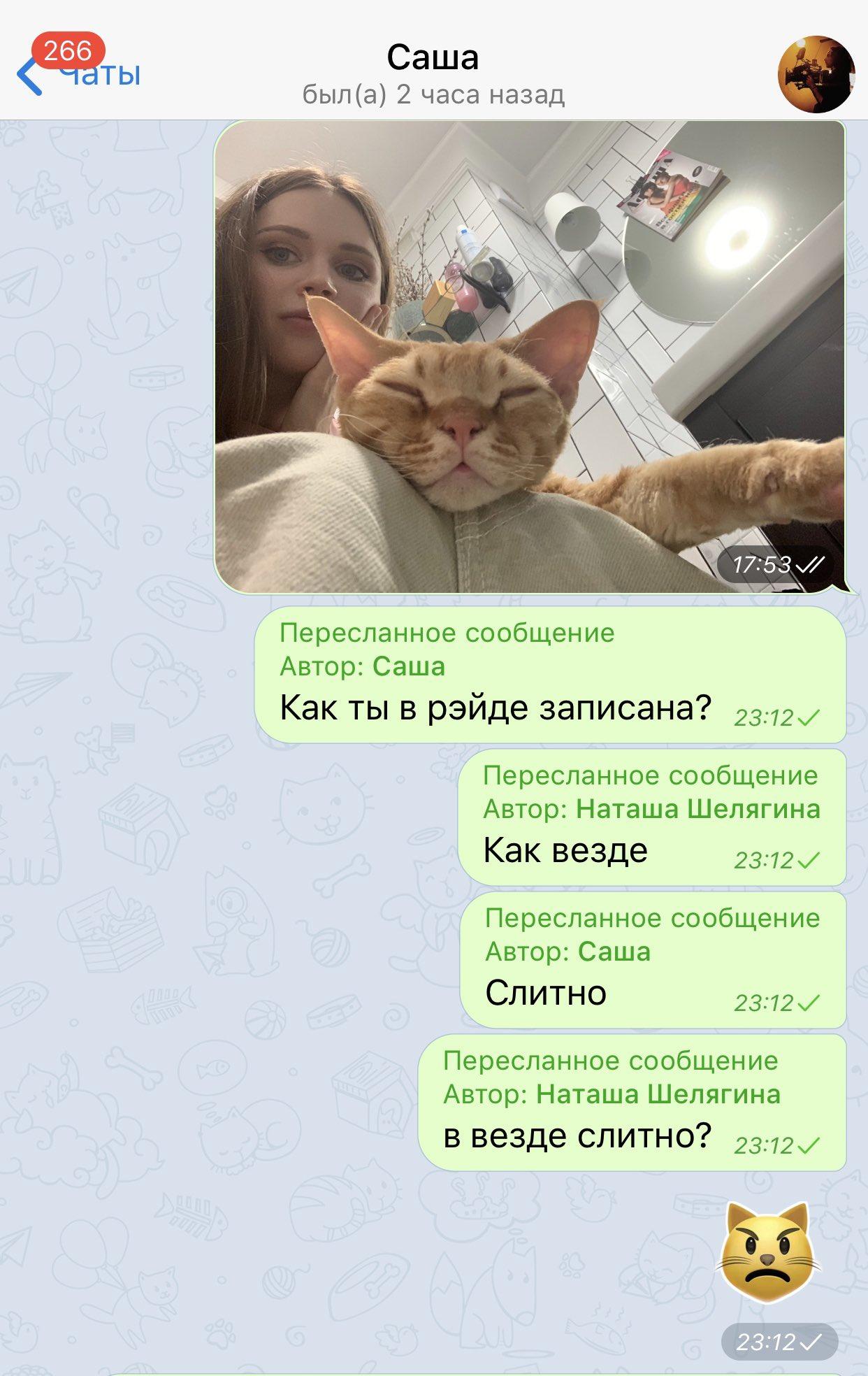 Слив Шелягина Телеграм