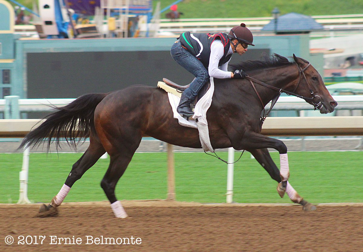 RT @ErnestoErnie93: Bendable working yesterday under Hall of Fame jockey Mike Smith aboard. https://t.co/8b8CuRFX2t