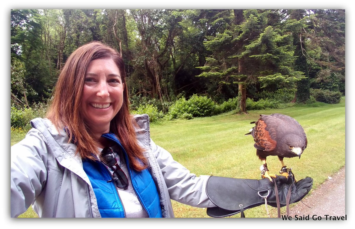 test Twitter Media - I LOVED the #Hawk Walk with Joyce! Thank you @ashfordcastle @AshfordOutdoors #LoveIreland #TCIreland #Ireland #natgeolodges #LGV20 #travel https://t.co/KtDe7avRca