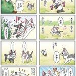 8コママンガ【今日のこねこのチー】チー、またまたレッスンする13DCGアニメ『こねこのチー ポンポンらー大冒険』がマンガ