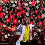 Photos: Scenes from Sasquatch! Music Festival