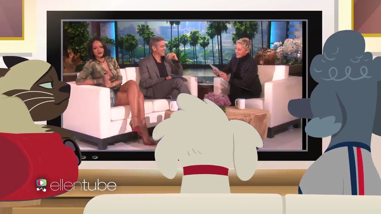 What do George Clooney, @Rihanna, and my pets have in common? You're about to find out in this episode of #PetDish! https://t.co/s6063oxxRC