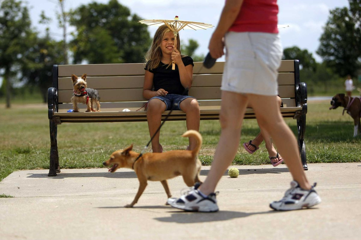 Dog-walking app now offers service in Houston area
