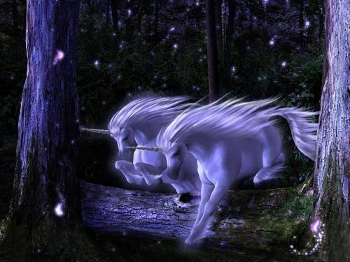 test Twitter Media - A fantastical night #unicorn #pegasus #EllenRothAuthor https://t.co/Dssh692z28
