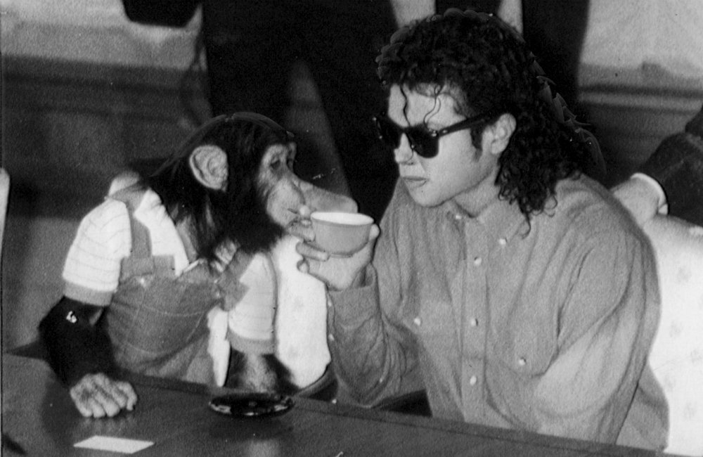 Netflix buys animated movie about Bubbles, Michael Jackson's pet chimpanzee https://t.co/epBFY2v9U8 https://t.co/PlhMa4Y1Ip