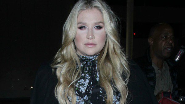 Kesha says that being body shamed on the internet contributed to her eating disorder.