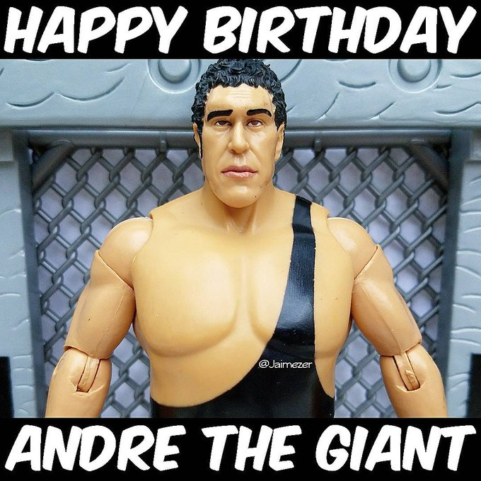 Happy Birthday to Andre the Giant! RIP (May 19, 1946 - January 27, 1993)