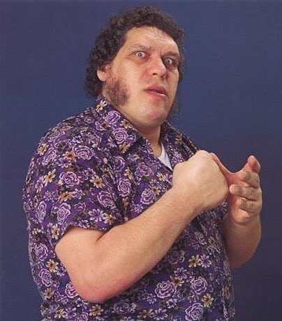 "Happy 71st birthday to the late great ""8th wonder of the world \"" Andre the Giant!"