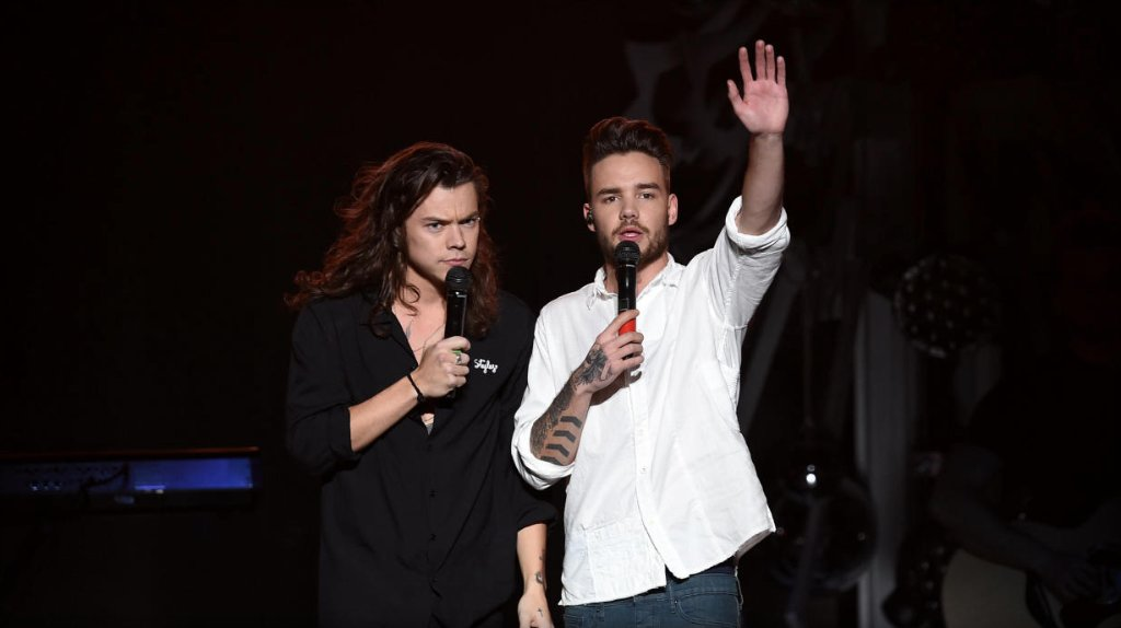 Liam Payne says former One Direction bandmate Harry Styles' music is not for him: