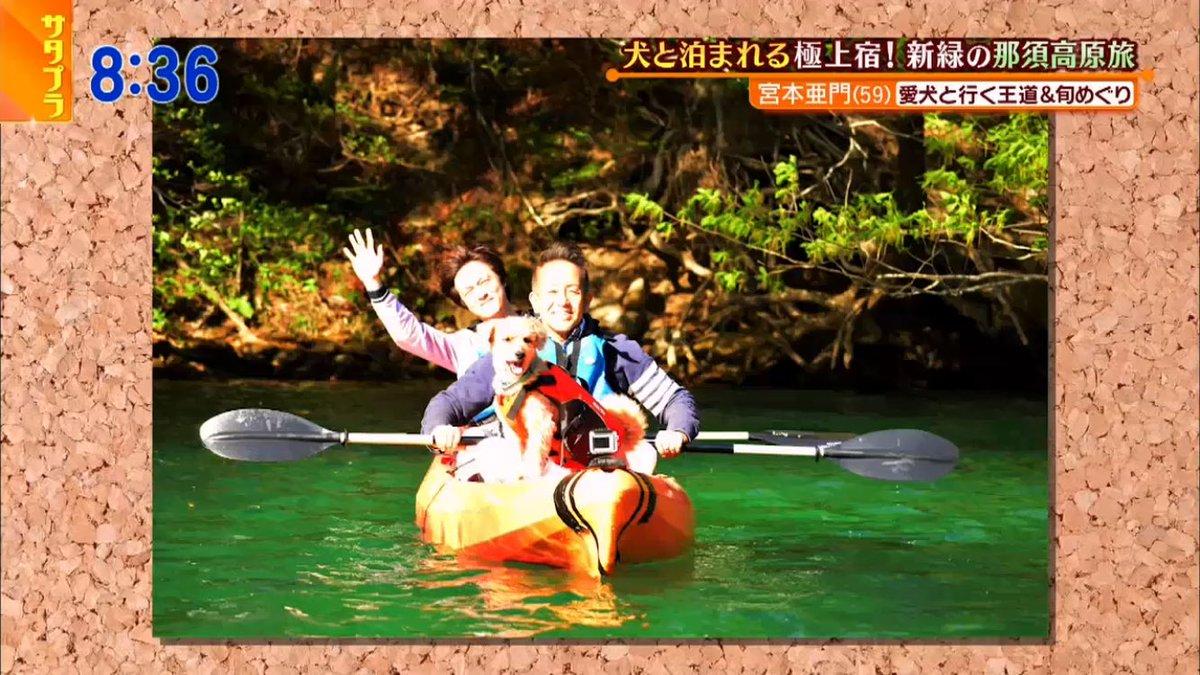 test ツイッターメディア - いい写真~♡丸山くんとカヌー乗りたいねえ♡#サタプラ https://t.co/l3WdVyxf8R