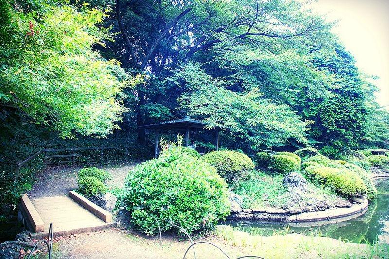 雨が好きになれる。新海誠監督の映画『言の葉の庭』を連想させる東京都内の庭園7選