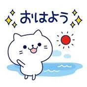 みなさまおはようございます♪ こちらは晴れてます〜! 暑くなりそうです!!! テレ東でこねこのチー観てますww みなさま