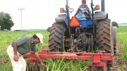 Kwale Sugar spurs cane production through irrigation