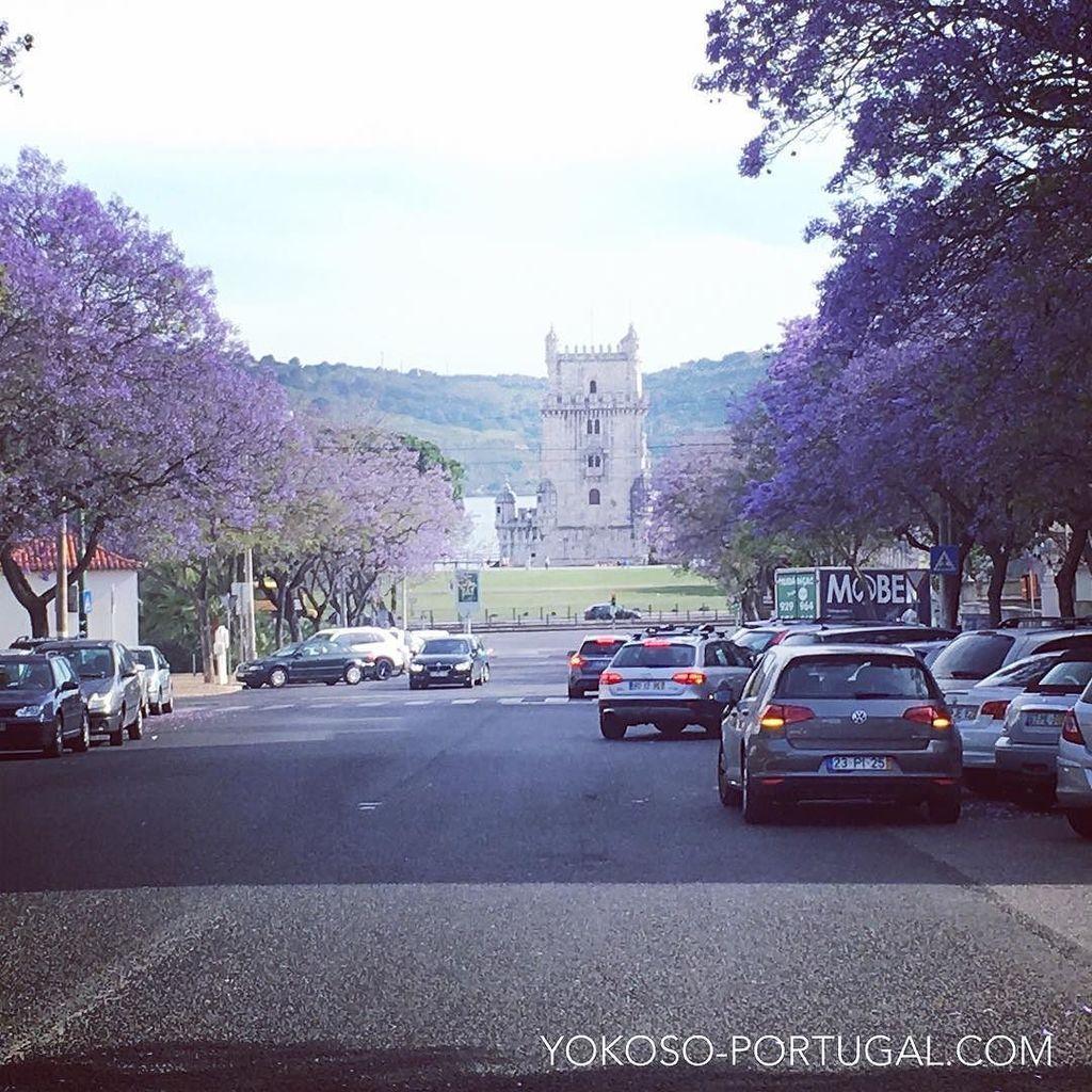 test ツイッターメディア - 世界遺産ベレンの塔の前のジャカランダ並木道。#リスボン #ポルトガル https://t.co/ltiXSEMnye