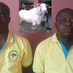 Amewu Gets Ram… Over Galamsey Fight