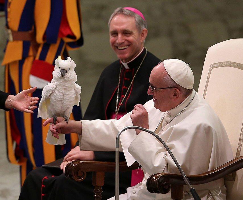 #PopeFrancis