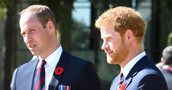 How William and Harry have grown into the men Princess Diana intended them to be: