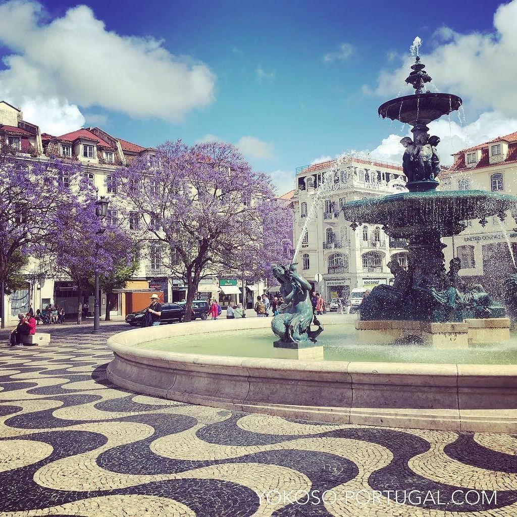 test ツイッターメディア - ロッシオ広場の噴水とジャカランダ。 #リスボン #ポルトガル https://t.co/ZvXa8FSjkw