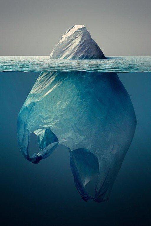 Cada vez que pides una bolsa en el súper matas un pez de colores. Imagen Jorge Gamboa.