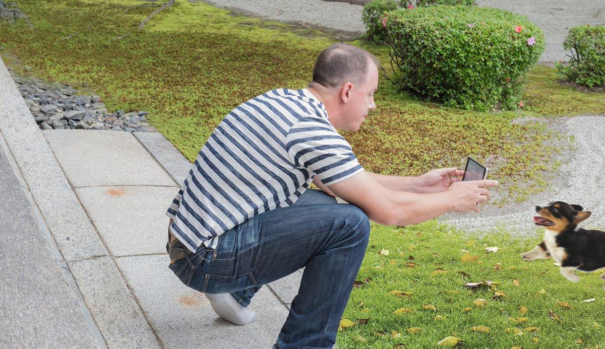 Agacharse para hacer fotos al perro es ya el único ejercicio que realizan los españoles