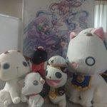 今日は天野こずえ先生の誕生日ですね。おめでとうございます!!!本当に素晴らしい作品です。なのでかわいい猫達を一緒に。今日