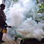 Pre-monsoon showers bring back dengue worry in Mysuru