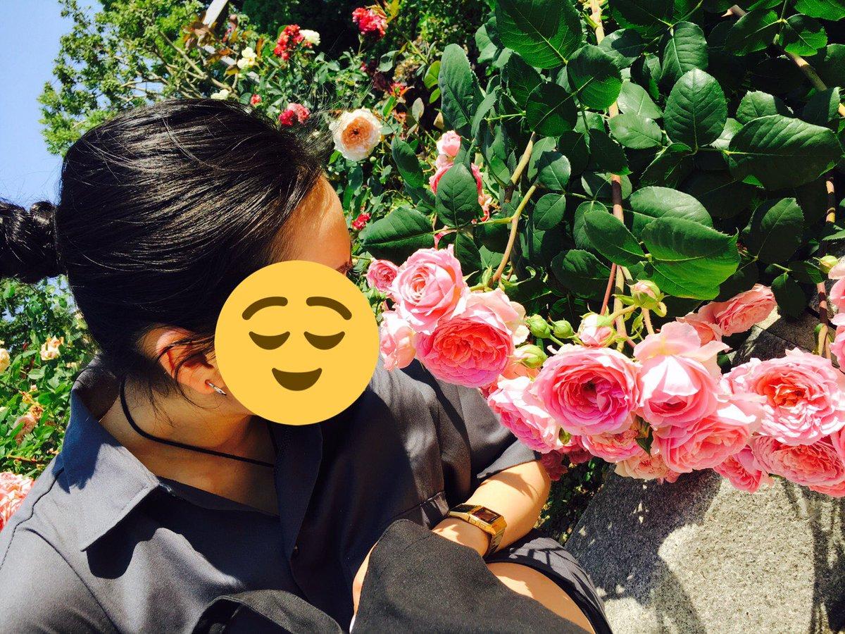 薔薇に埋もれるギャングスタの写真です