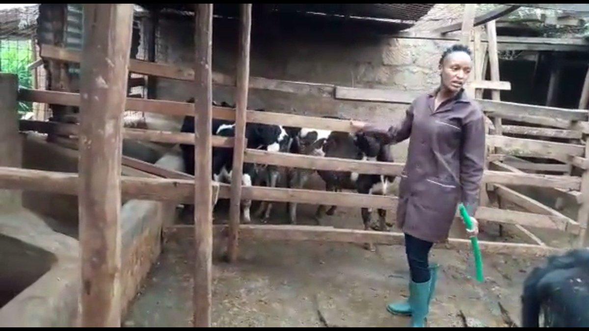test Twitter Media - Video of Carol Njeri Gathogo (28), dairy farmer in Kenya & participant #YouthEmployment conference 30/5 @DutchMFA! https://t.co/Ds6Bc0ajA1 https://t.co/uwqsztsFdM