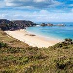 #MadeInFrance: Algologie, la beauté née du jardin marin de Bretagne