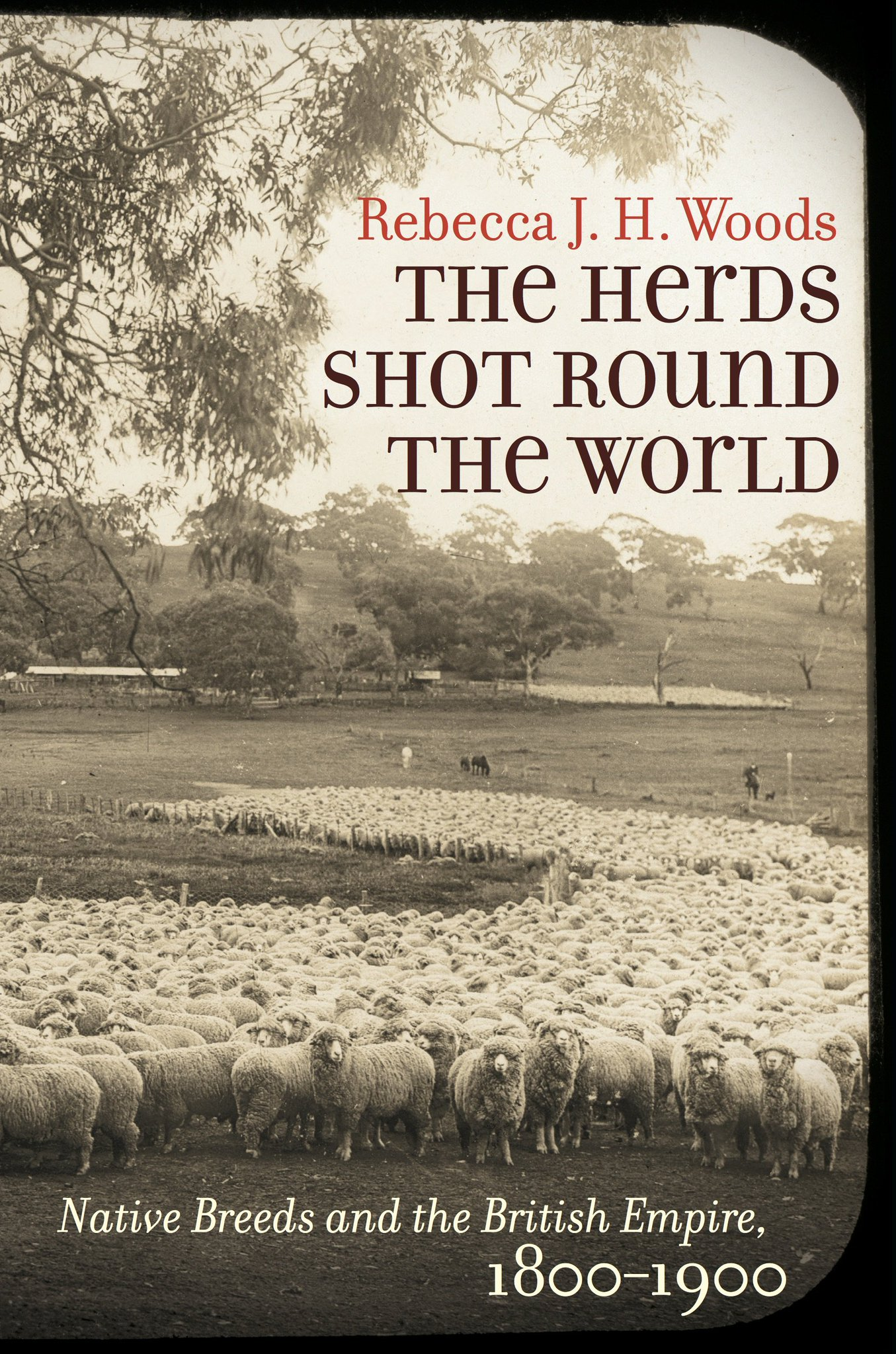 My new book, The Herds Shot Round the World, is available on Amazon for pre-order! https://t.co/4usQKo3Xoj https://t.co/TCa2OP7QbI
